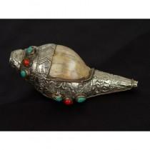 Tibetan Antique Buddhist musical instrument - Conch